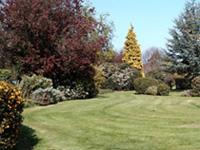 Bancroft Park