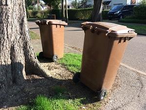 Garden waste bins